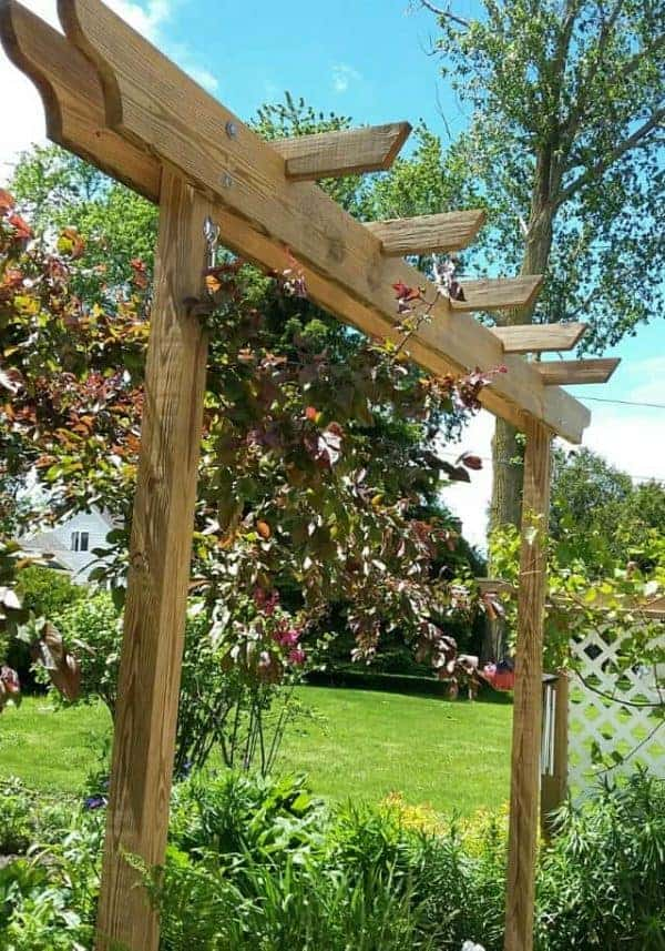 JEFF K 30' CEDAR BRIM WITH (3) 6X6 NOTCHED POSTS, 2X8 BEAMS AND 2X4 RAFTERS  ON 12