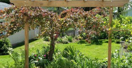 garden arbors