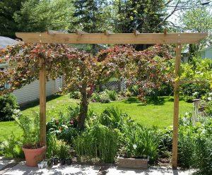 Gift Ideas for Gardening - Brim Pergola Kits for Gardens